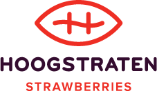 Hoogstraten strawberries